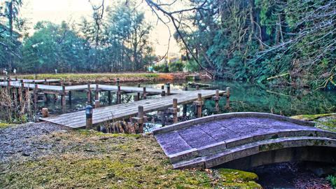 行田池にかかる橋