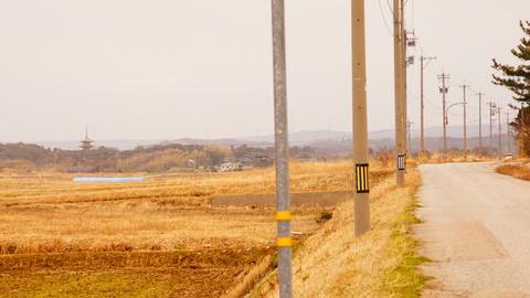 遠方からでも見える五重塔