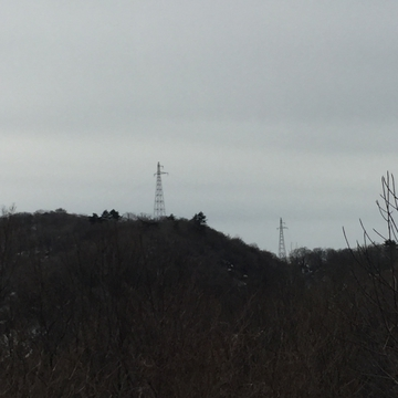 遠くに新内川第2線が見える