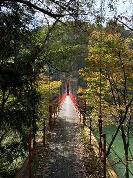 手すりの低い高度感のある吊り橋を渡る