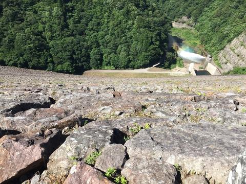 ロックフィルの岩は除草剤は決して使えない