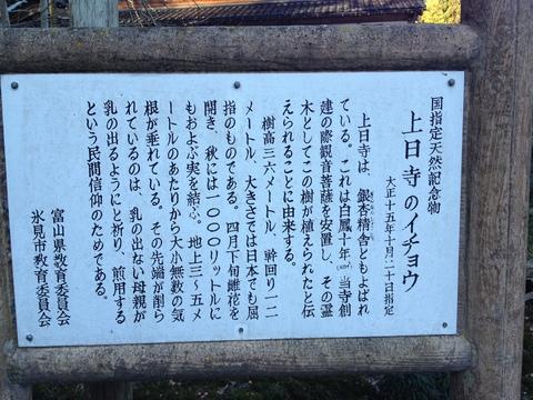 上日寺のイチョウの案内板