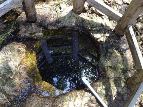 弘法池の清水