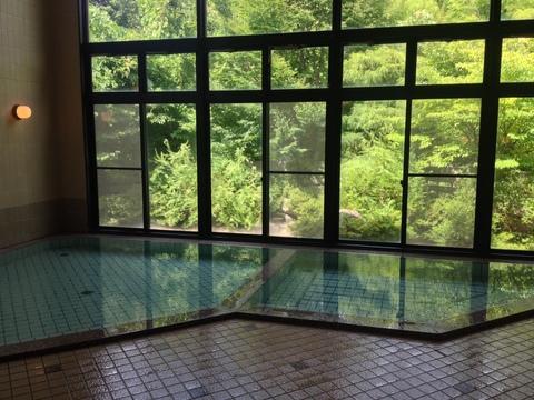 シンプルだが庭の景観がよい浴室