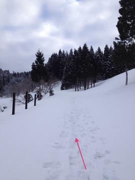 出発。冬期の東山いこいの森への道は雪で埋まっている
