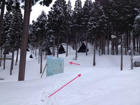 いこいの森のコテージが並ぶ