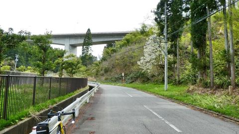 下涌波大橋のをくぐって森下川西方支流沿いへ