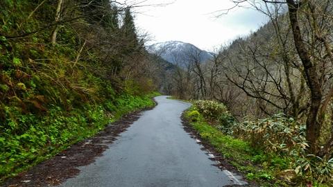 ゲートを抜けると菊水までの静かな道が続く奥には奥獅子吼山
