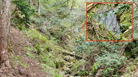 急坂へ、奥に滝が見えた