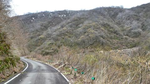 犀鶴林道最南端地点へ。道がくの字に折れ曲がる