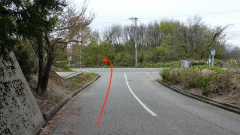 国道359号に突き当たるので左