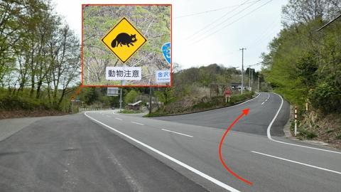 国道359号から県道213号へすぐ右に入る。タヌキが目印