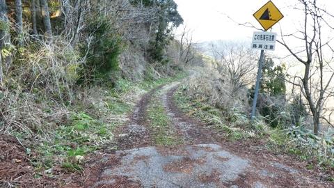 走りやすい未舗装林道が続く