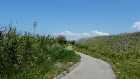 海沿いサイクリングの開始