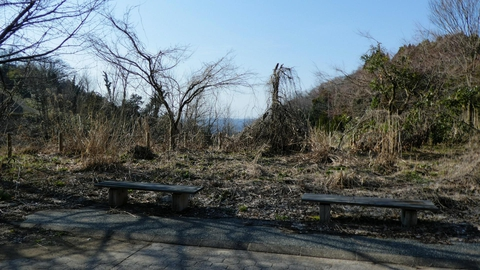 なぜかこんなところにベンチ。木が伸びる前は展望良かったのかな