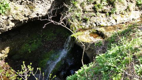 澄んだ水の流れ
