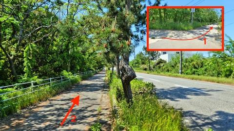 道は里山海道を離れ一般道横へ