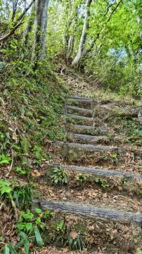 本当に天国まで届きそうな極楽坂階段288段