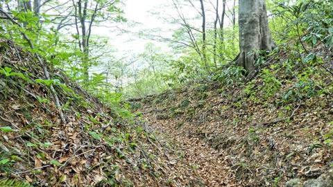 奥医王山山頂から奥は車道も人も無くとても静か