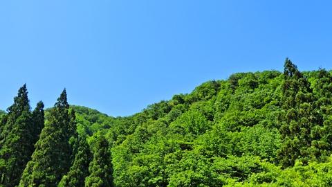 高野山と揚原山。丁度間の谷間まで自転車で登れる