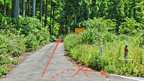 ここで県道43号は行き止まり。林道赤倉線へ