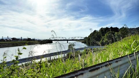 九頭竜川にかかる成鹿大橋が見えたら折返しはもうすぐ