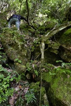 コケでぬるついた岩場の難所を登る。下りはオススメしない