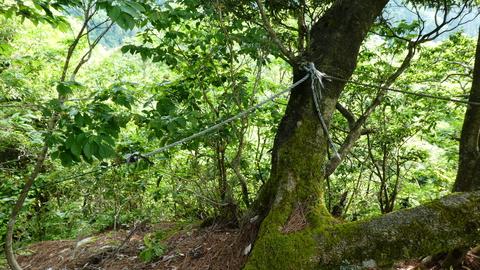 展望台岩より。高度感があるがロープもあり安全