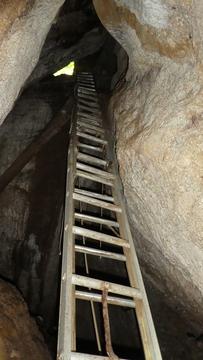 5メートルのアルミはしご。2重にして補強してある