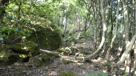 大きな岩を左に上がれば看板と洞窟入り口が見える。