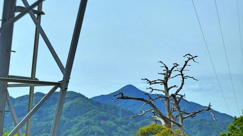 後ろには富士写ヶ岳が見え始める