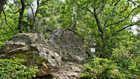 巡視路18番分岐。ここからは左の岩を登っていく