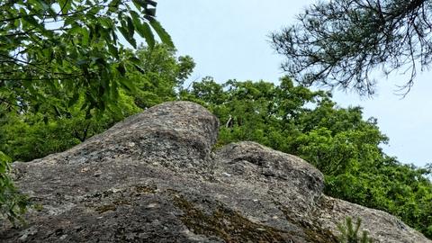 ぽっこり岩の頭。登れる