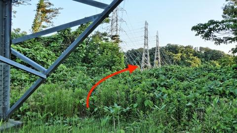 先には1番鉄塔が見える。草をかき分けて