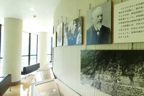 2階は桑島化石壁とライン博士の展示