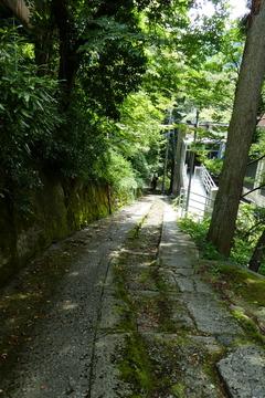 風情のある神社のような道。中央だけ階段?