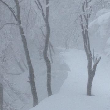 雪庇足下は空中の場合も