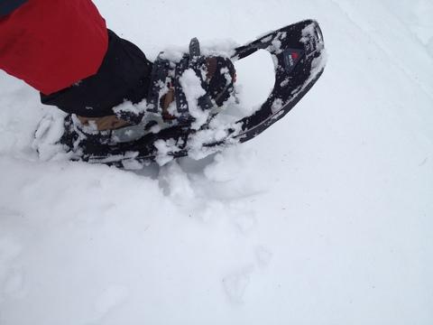 グローブでも調整しやすいストラップと雪離れのよい幌