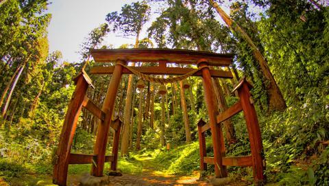 赤蔵神社本殿鳥居