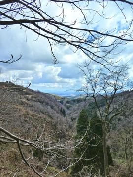 伏見川が流れる谷を見ながら
