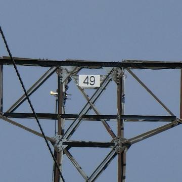 番号札の例