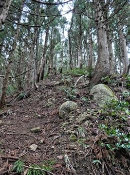 むき出しの岩がゴロゴロした急坂を登る