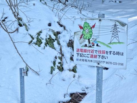 ユニークな採伐禁止標識 鉄塔は関電風?