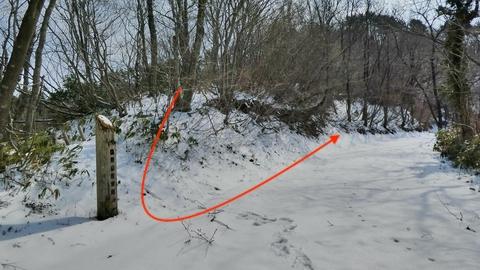 林道に降りる(写真は残雪期)