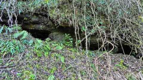 謎のトンネル。入る勇気はなかった