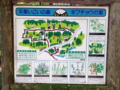 野鳥観察舎周辺案内図