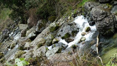 不思議と上流へ行くほど巨石が減ってくる