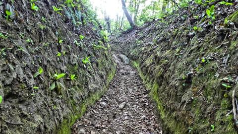 左右掘りこまれた古道風の道