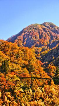 橋の向こうに願教寺山