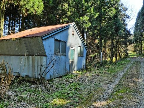 歩きやすい未舗装林道の横に変わった形の小屋
